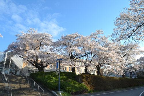 千厩市役所