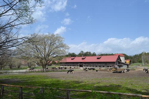 小岩井農場上丸牛舎